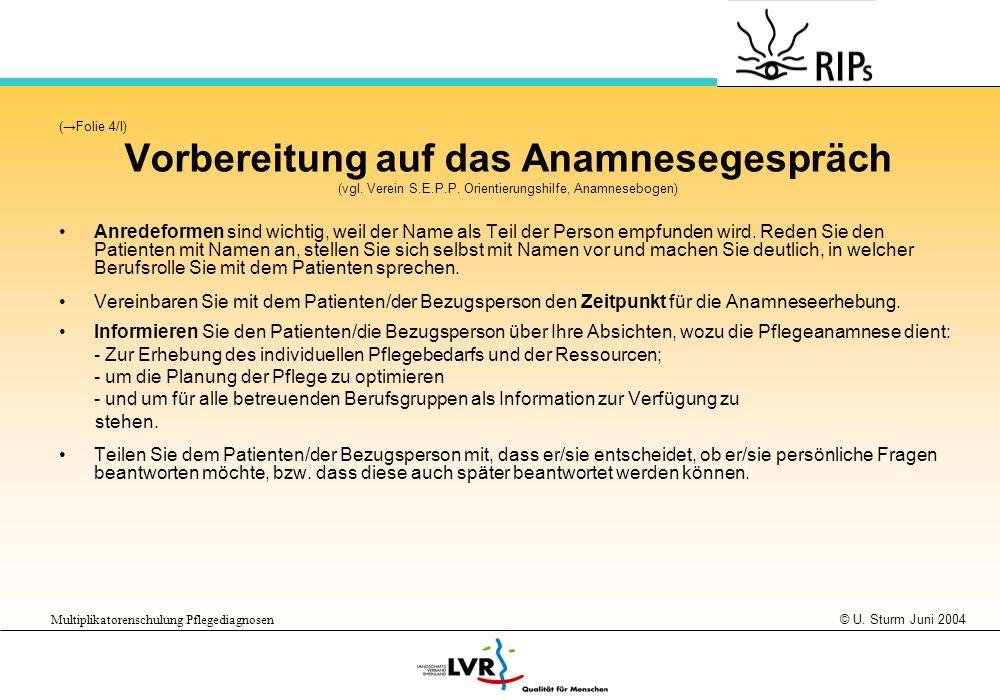 © U. Sturm Juni 2004 Multiplikatorenschulung Pflegediagnosen (Folie 4/I) Vorbereitung auf das Anamnesegespräch (vgl. Verein S.E.P.P. Orientierungshilf