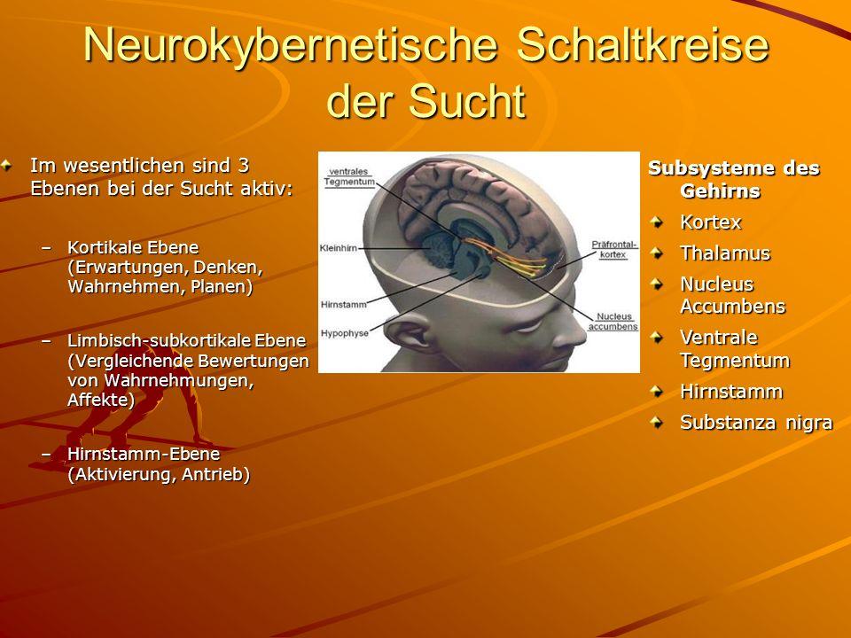 Neurokybernetische Schaltkreise der Sucht Im wesentlichen sind 3 Ebenen bei der Sucht aktiv: –Kortikale Ebene (Erwartungen, Denken, Wahrnehmen, Planen