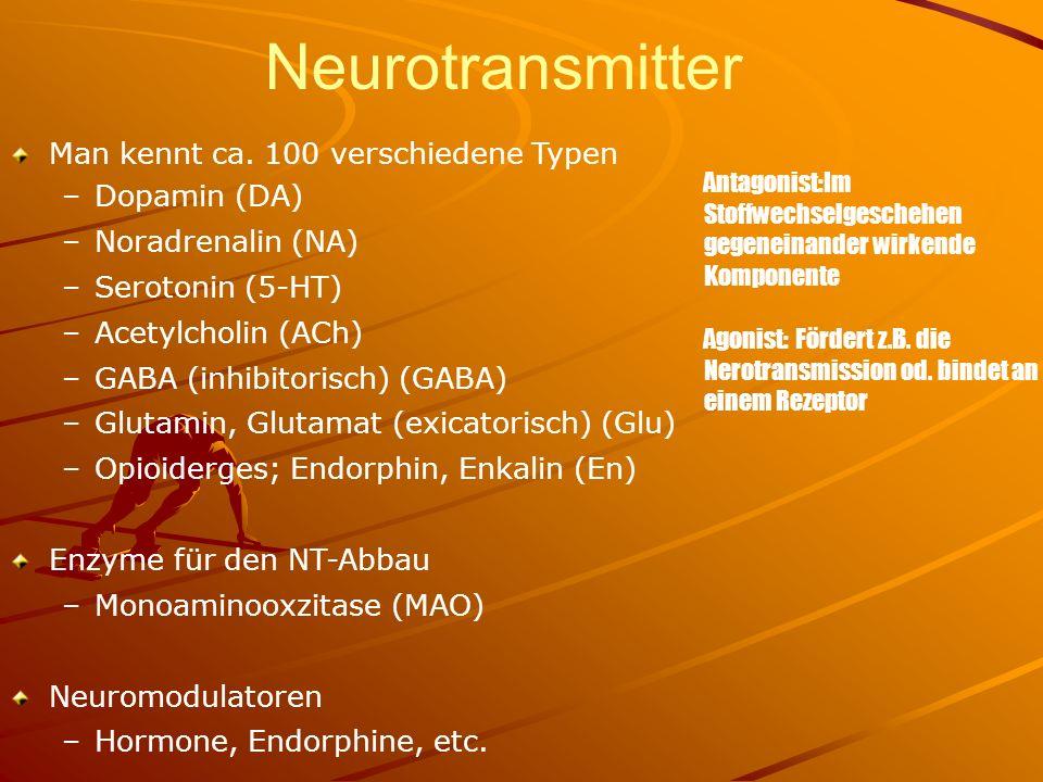 Neurotransmitter Man kennt ca. 100 verschiedene Typen –Dopamin (DA) –Noradrenalin (NA) –Serotonin (5-HT) –Acetylcholin (ACh) –GABA (inhibitorisch) (GA
