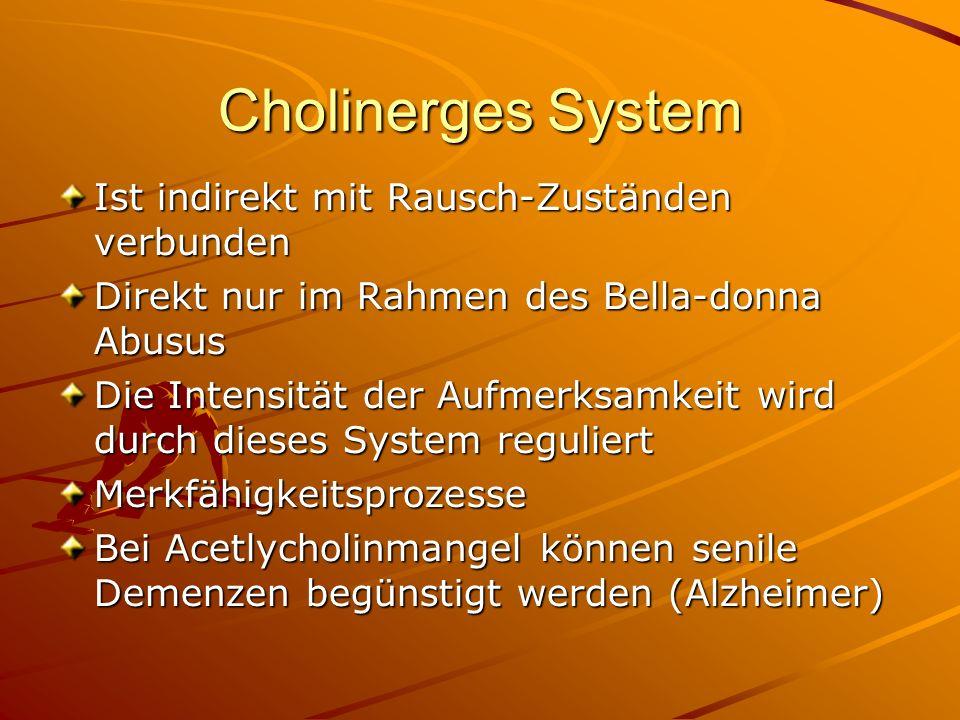Cholinerges System Ist indirekt mit Rausch-Zuständen verbunden Direkt nur im Rahmen des Bella-donna Abusus Die Intensität der Aufmerksamkeit wird durc