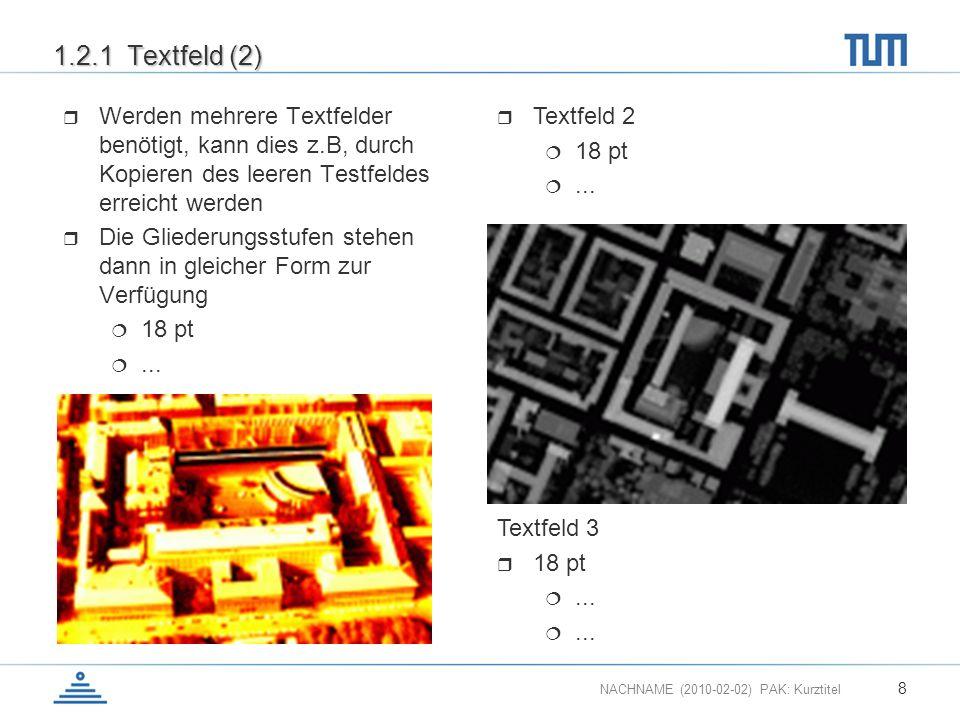 NACHNAME (2010-02-02) PAK: Kurztitel 8 1.2.1 Textfeld (2) Werden mehrere Textfelder benötigt, kann dies z.B, durch Kopieren des leeren Testfeldes erre