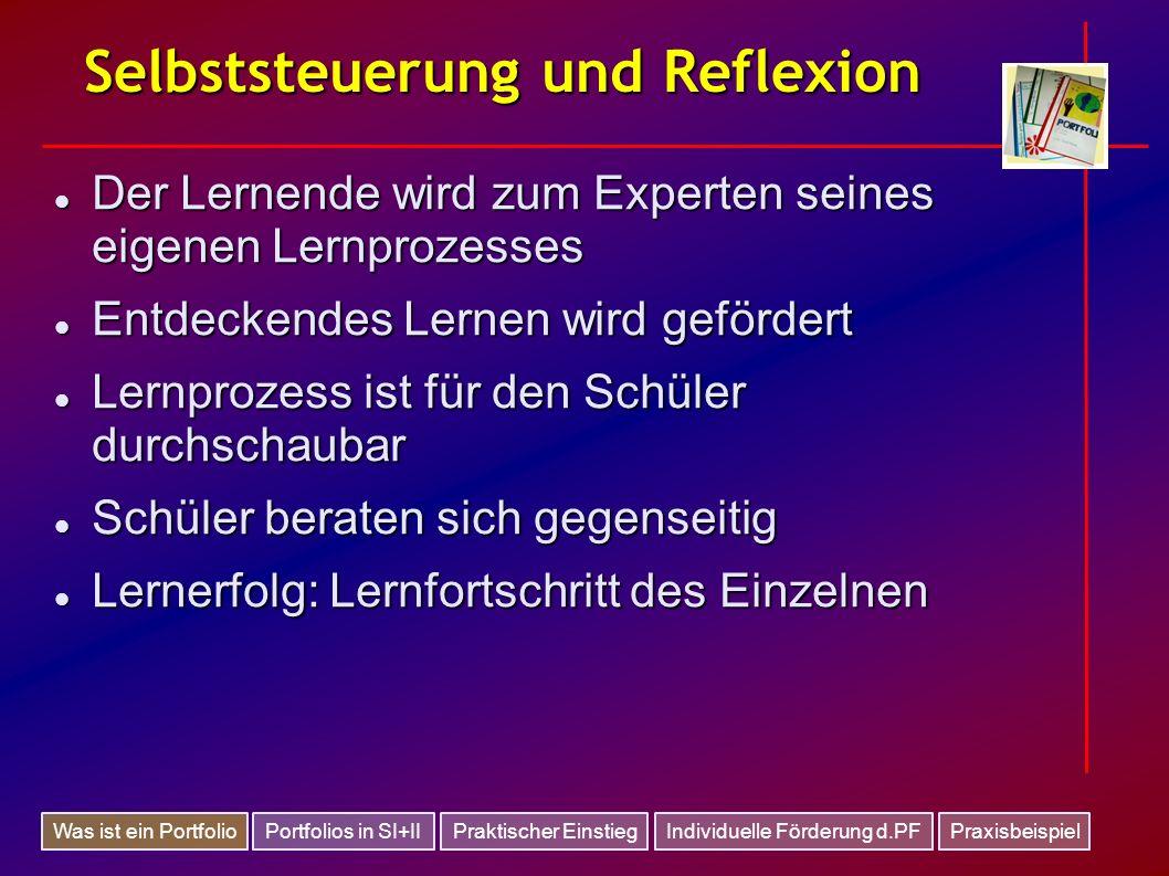 Selbststeuerung und Reflexion Der Lernende wird zum Experten seines eigenen Lernprozesses Der Lernende wird zum Experten seines eigenen Lernprozesses