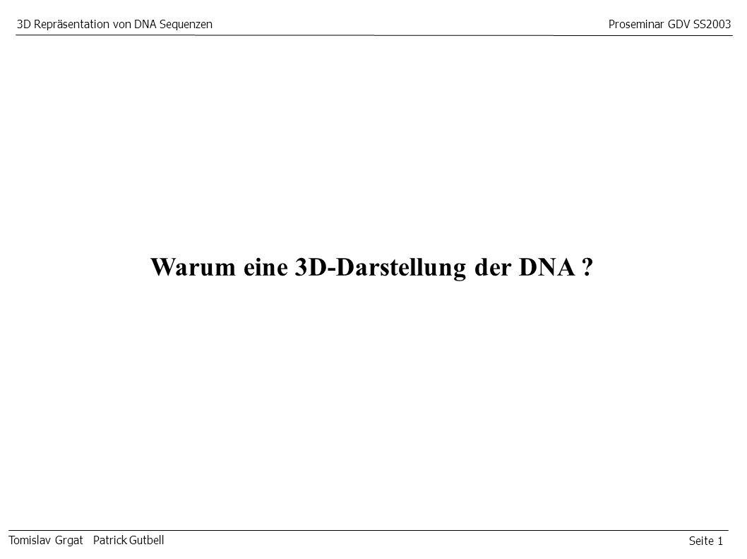 Seite 1 Tomislav Grgat Patrick Gutbell 3D Repräsentation von DNA SequenzenProseminar GDV SS2003 Warum eine 3D-Darstellung der DNA ?