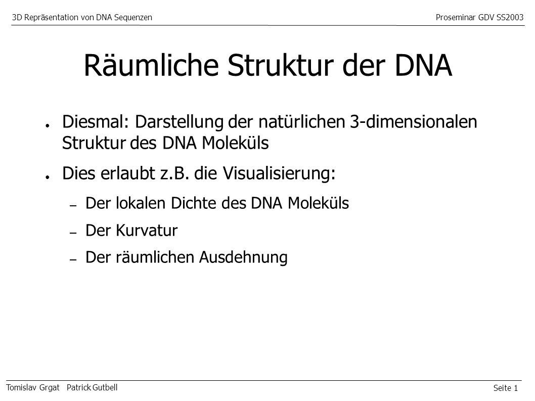 Seite 1 Tomislav Grgat Patrick Gutbell 3D Repräsentation von DNA SequenzenProseminar GDV SS2003 Räumliche Struktur der DNA Diesmal: Darstellung der natürlichen 3-dimensionalen Struktur des DNA Moleküls Dies erlaubt z.B.