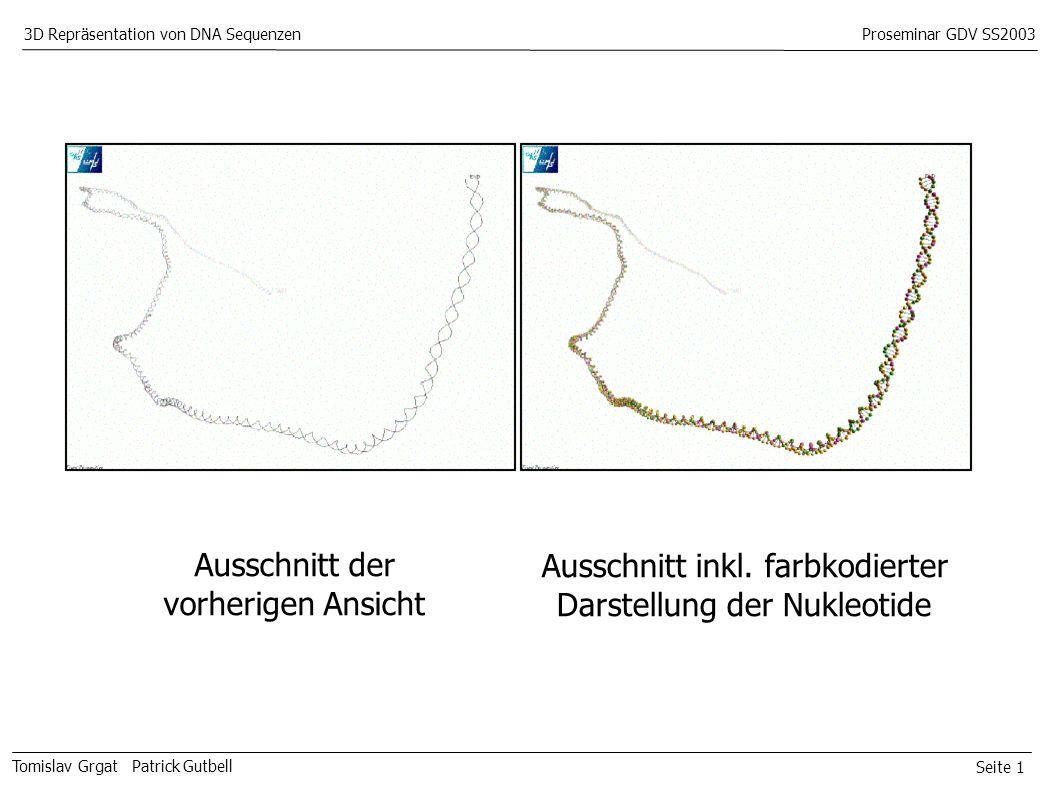 Seite 1 Tomislav Grgat Patrick Gutbell 3D Repräsentation von DNA SequenzenProseminar GDV SS2003 Ausschnitt der vorherigen Ansicht Ausschnitt inkl.