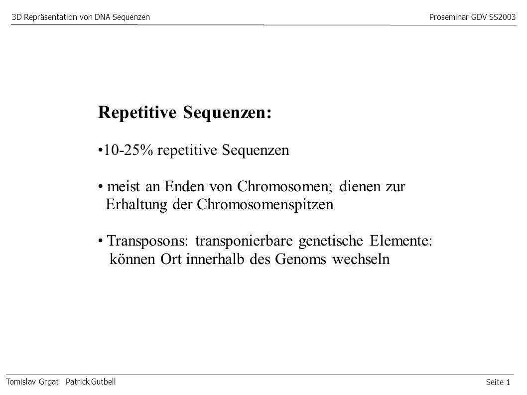 Seite 1 Tomislav Grgat Patrick Gutbell 3D Repräsentation von DNA SequenzenProseminar GDV SS2003 Repetitive Sequenzen: 10-25% repetitive Sequenzen meist an Enden von Chromosomen; dienen zur Erhaltung der Chromosomenspitzen Transposons: transponierbare genetische Elemente: können Ort innerhalb des Genoms wechseln