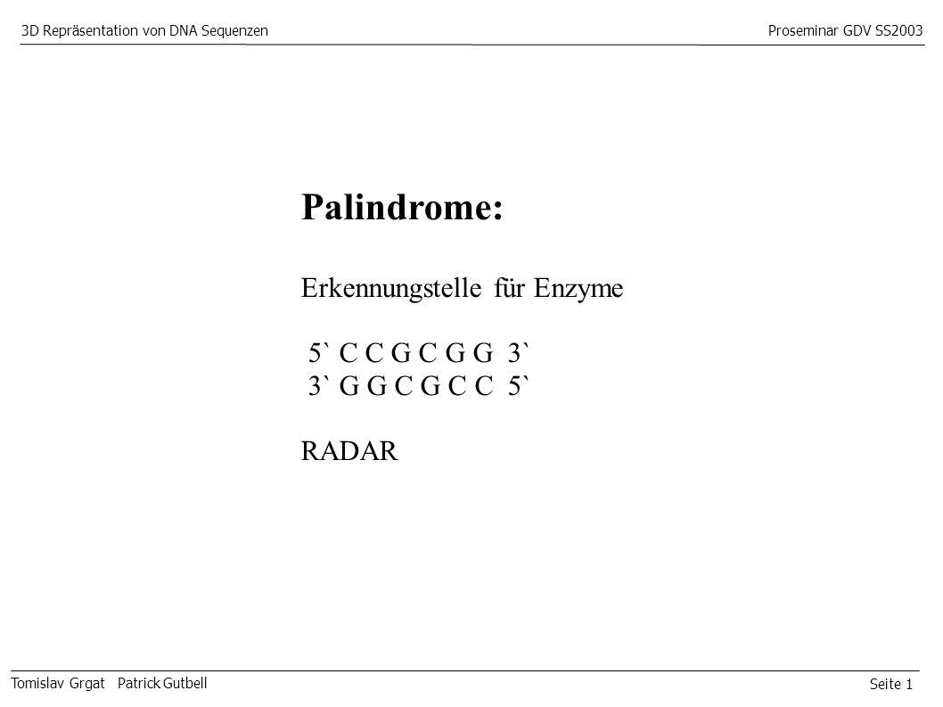 Seite 1 Tomislav Grgat Patrick Gutbell 3D Repräsentation von DNA SequenzenProseminar GDV SS2003 Palindrome: Erkennungstelle für Enzyme 5` C C G C G G 3` 3` G G C G C C 5` RADAR