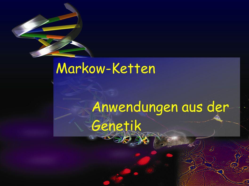Markow-Ketten Anwendungen aus der Genetik