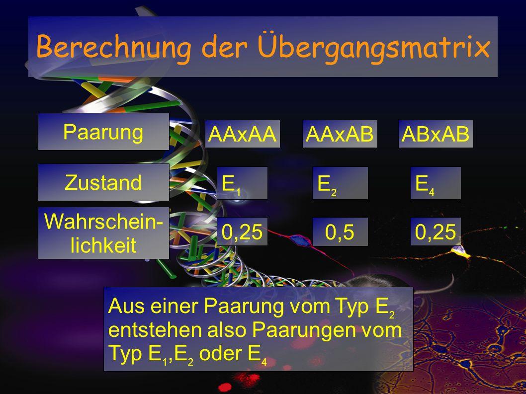 Berechnung der Übergangsmatrix Paarung AAxAAAAxABABxAB 0,25 0,5 Aus einer Paarung vom Typ E 2 entstehen also Paarungen vom Typ E 1,E 2 oder E 4 Zustan