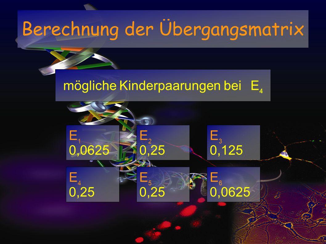 mögliche Kinderpaarungen bei E 4 E 1 0,0625 E 2 0,25 E 3 0,125 E 4 0,25 E 5 0,25 E 6 0,0625