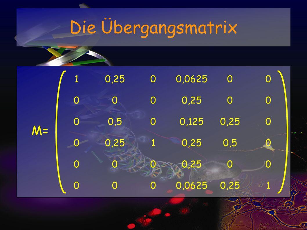 Die Übergangsmatrix 10,2500,062500 0000,2500 00,500,1250,250 0 1 0,50 0000,2500 0000,06250,251 M=