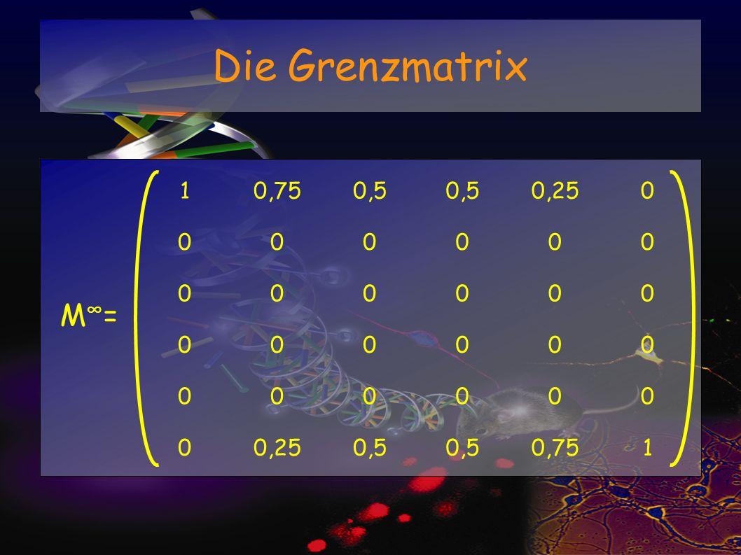 Die Grenzmatrix 10,750,5 0,250 000000 000000 000000 000000 0 0,5 0,751 M =