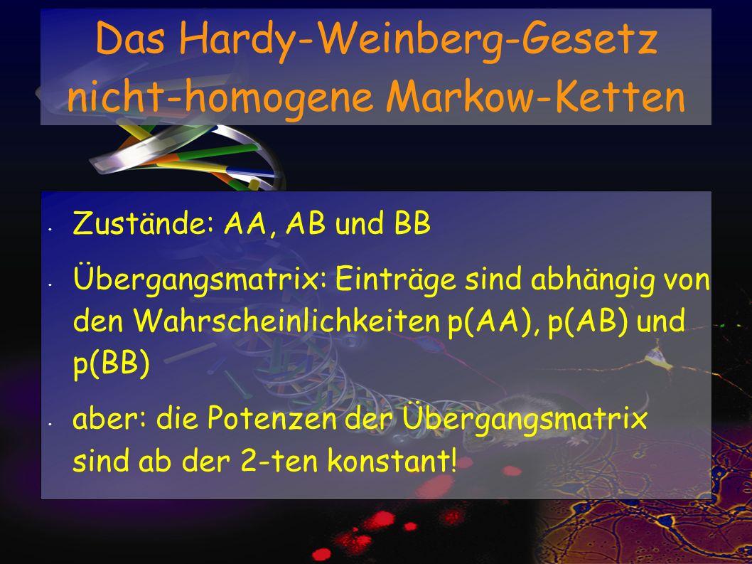 Das Hardy-Weinberg-Gesetz nicht-homogene Markow-Ketten Zustände: AA, AB und BB Übergangsmatrix: Einträge sind abhängig von den Wahrscheinlichkeiten p(