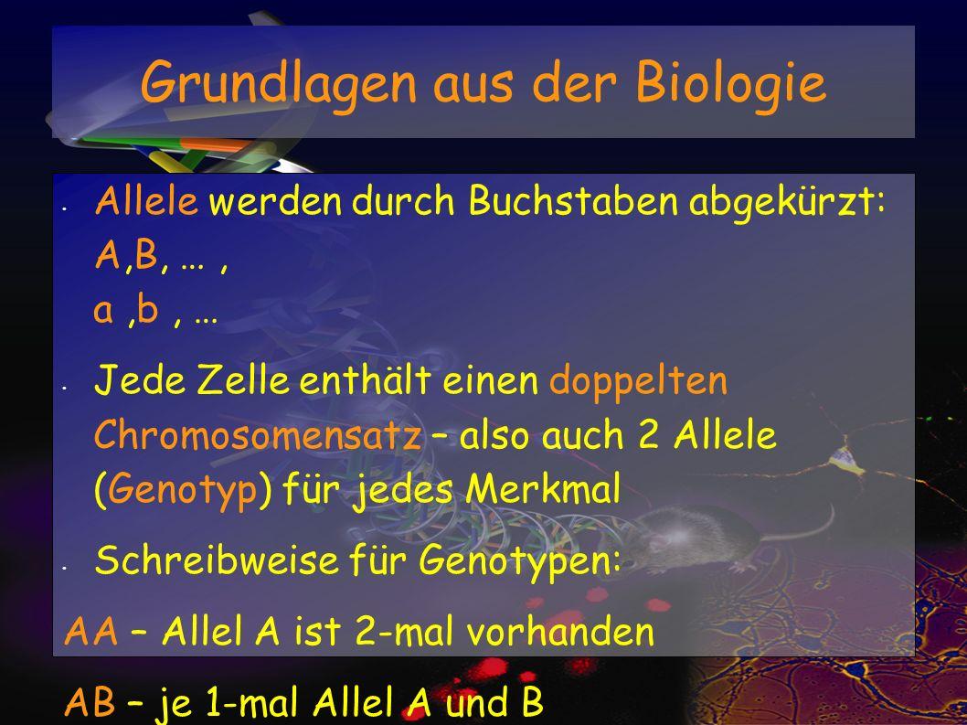 Allele werden durch Buchstaben abgekürzt: A,B, …, a,b, … Jede Zelle enthält einen doppelten Chromosomensatz – also auch 2 Allele (Genotyp) für jedes M