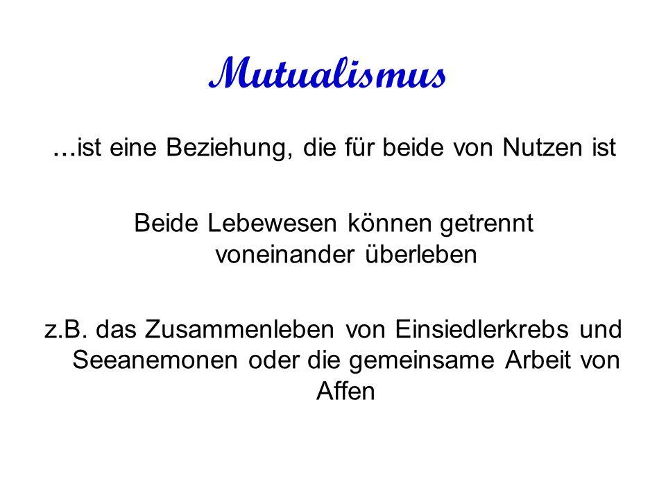 Mutualismus...