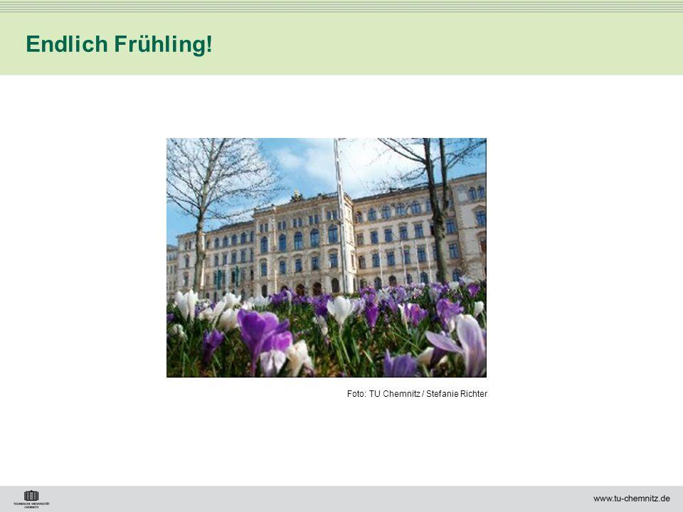 Foto: TU Chemnitz / Stefanie Richter Endlich Frühling!