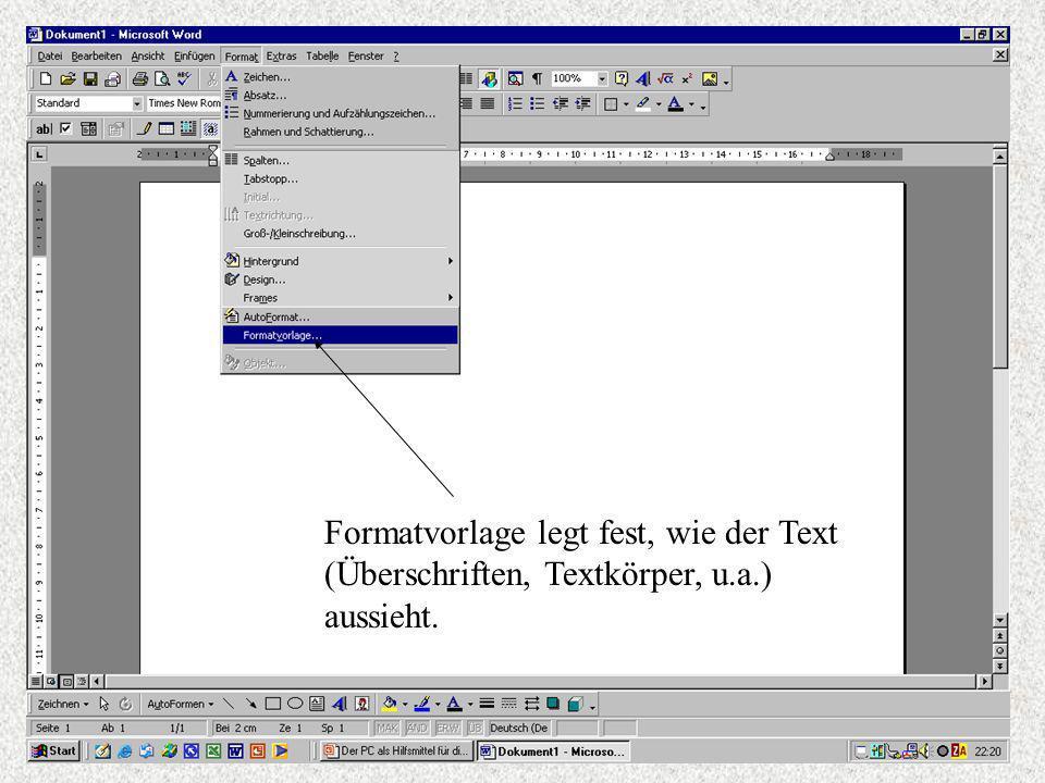 Formatvorlage legt fest, wie der Text (Überschriften, Textkörper, u.a.) aussieht.