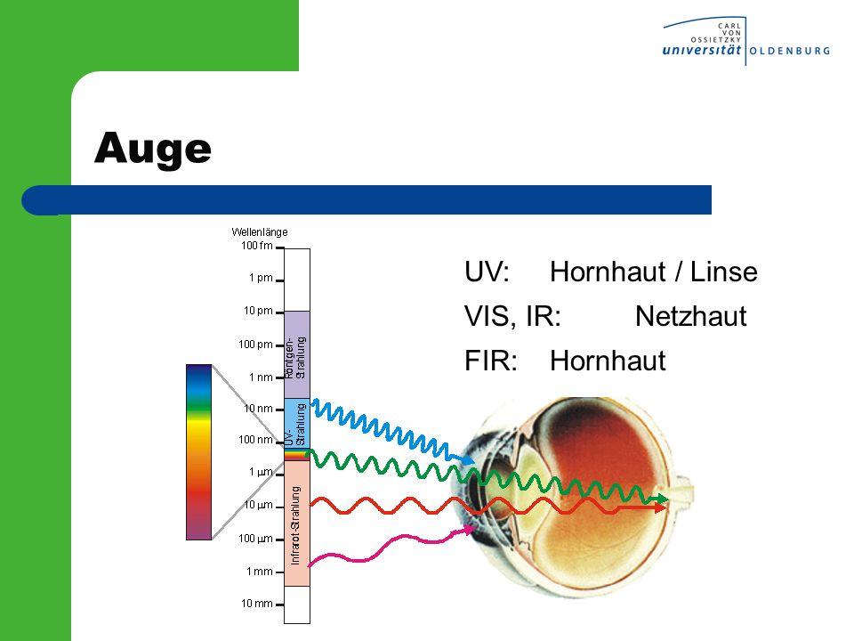 Auge UV:Hornhaut / Linse VIS, IR:Netzhaut FIR:Hornhaut