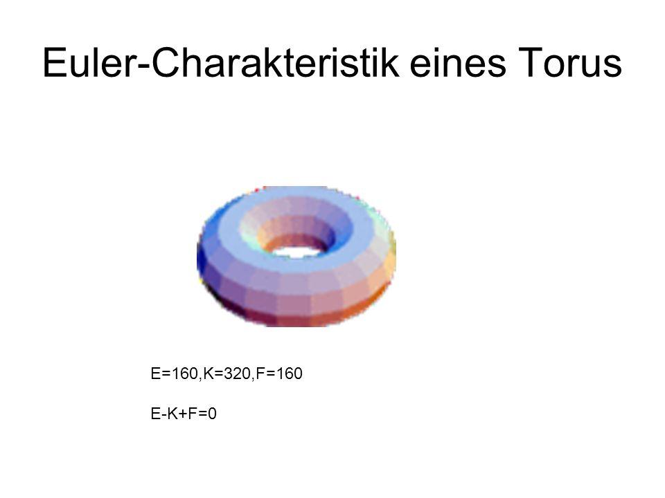 Euler-Charakteristik eines Torus E=160,K=320,F=160 E-K+F=0