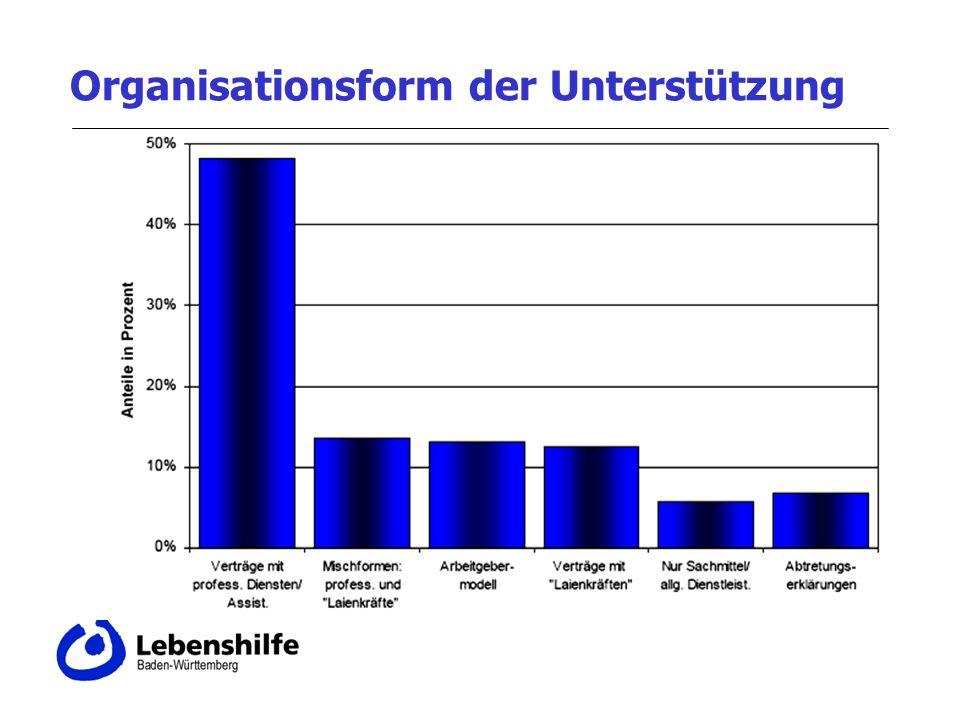 Organisationsform der Unterstützung