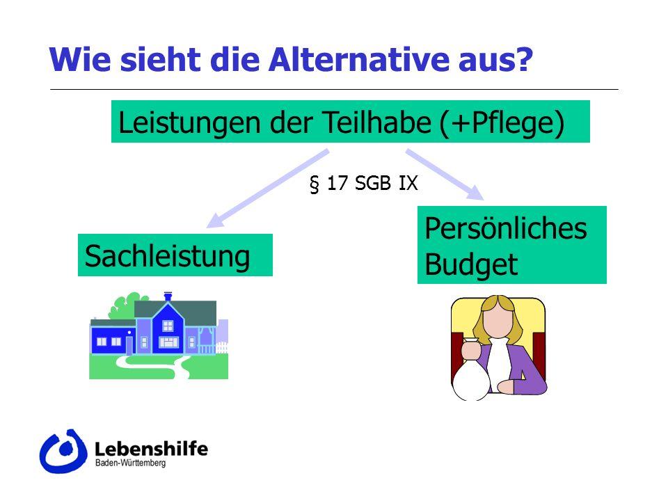 Wie sieht die Alternative aus? Leistungen der Teilhabe (+Pflege) Sachleistung Persönliches Budget § 17 SGB IX