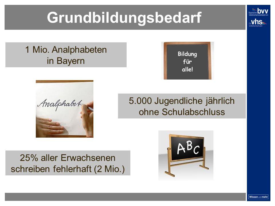 Grundbildungsbedarf 1 Mio. Analphabeten in Bayern 5.000 Jugendliche jährlich ohne Schulabschluss 25% aller Erwachsenen schreiben fehlerhaft (2 Mio.)
