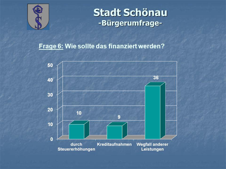 Stadt Schönau -Bürgerumfrage- Frage 6: Wie sollte das finanziert werden?
