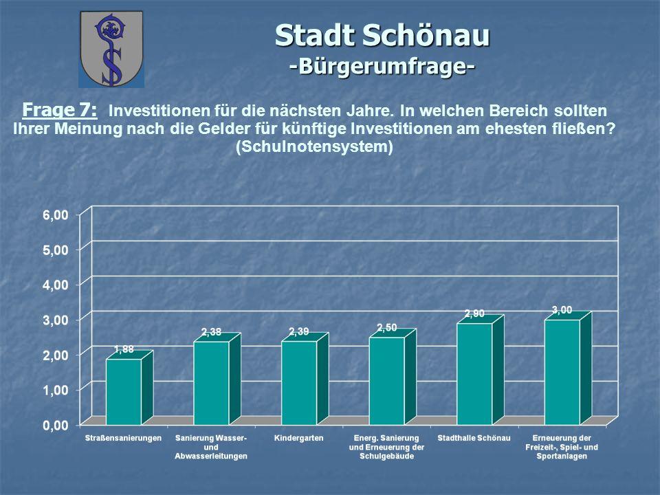 Stadt Schönau -Bürgerumfrage- Frage 7: Investitionen für die nächsten Jahre.