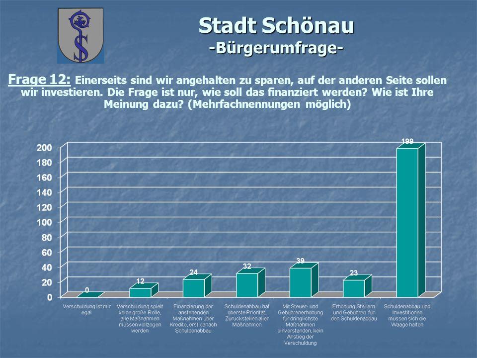 Stadt Schönau -Bürgerumfrage- Frage 12: Einerseits sind wir angehalten zu sparen, auf der anderen Seite sollen wir investieren. Die Frage ist nur, wie