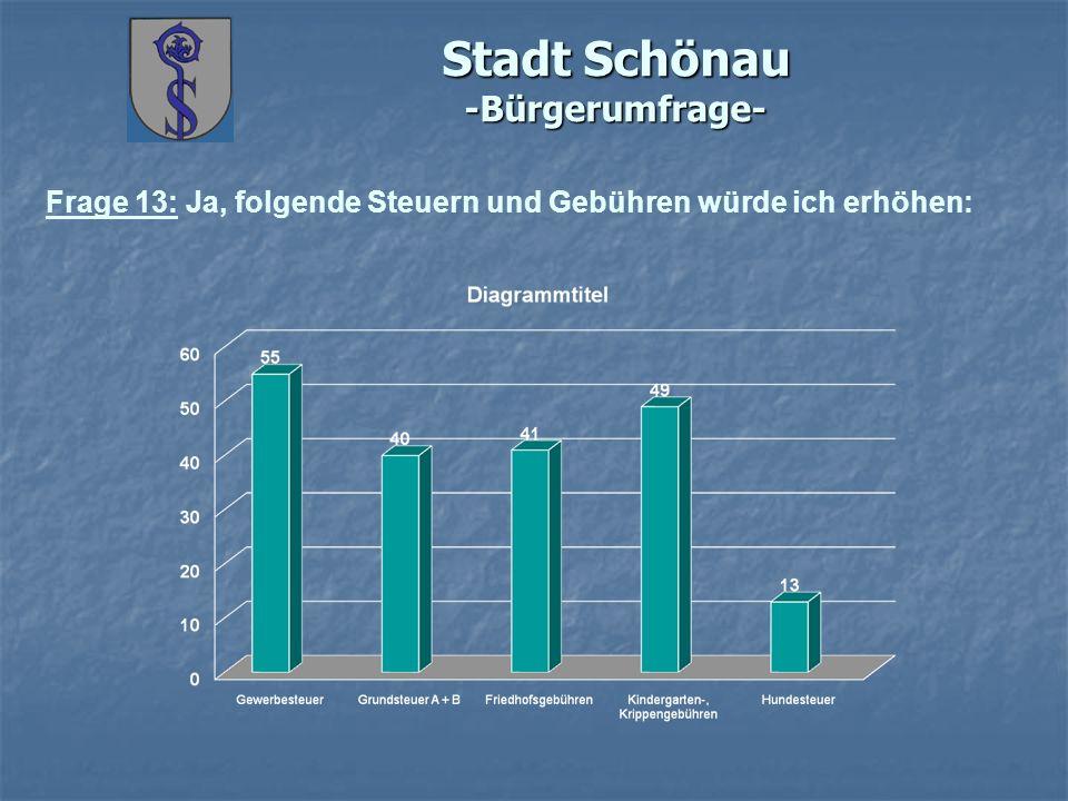 Stadt Schönau -Bürgerumfrage- Frage 13: Ja, folgende Steuern und Gebühren würde ich erhöhen: