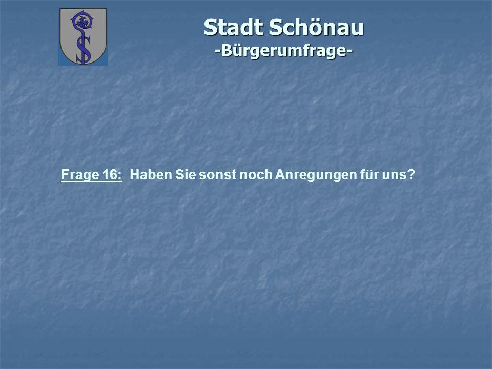 Stadt Schönau -Bürgerumfrage- Frage 16: Haben Sie sonst noch Anregungen für uns