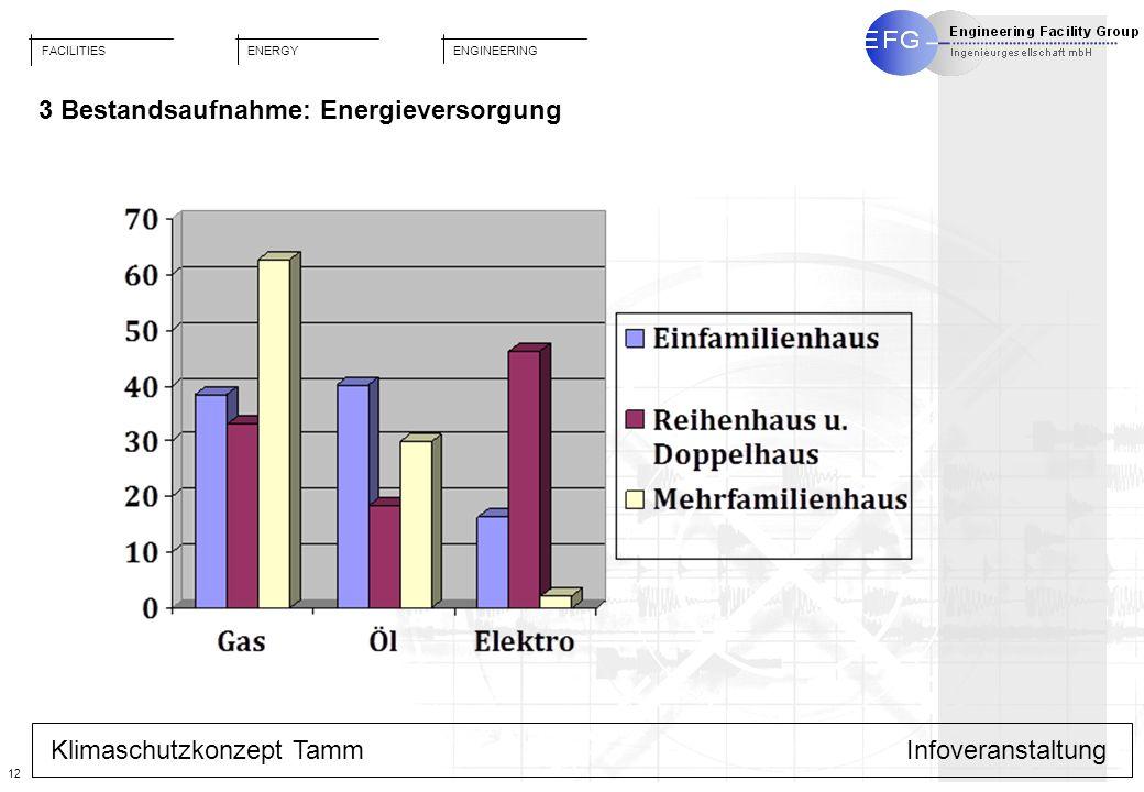 FACILITIES ENGINEERING ENERGY 12 Klimaschutzkonzept TammInfoveranstaltung 3 Bestandsaufnahme: Energieversorgung