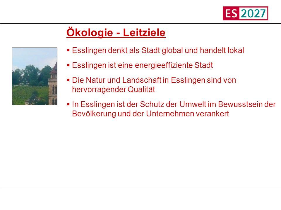 Titel Ökologie - Leitziele Esslingen denkt als Stadt global und handelt lokal Esslingen ist eine energieeffiziente Stadt Die Natur und Landschaft in E