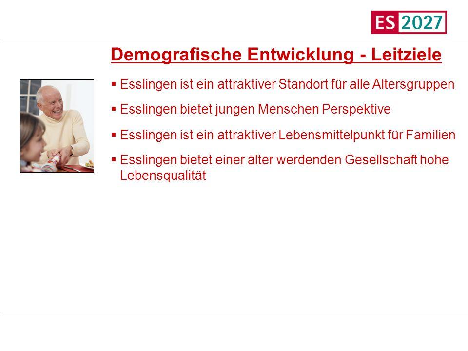 Titel Demografische Entwicklung - Leitziele Esslingen ist ein attraktiver Standort für alle Altersgruppen Esslingen bietet jungen Menschen Perspektive
