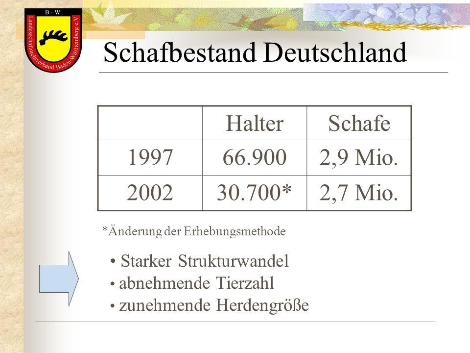 Schafbestand Deutschland HalterSchafe 199766.9002,9 Mio. 200230.700*2,7 Mio. *Änderung der Erhebungsmethode Starker Strukturwandel abnehmende Tierzahl