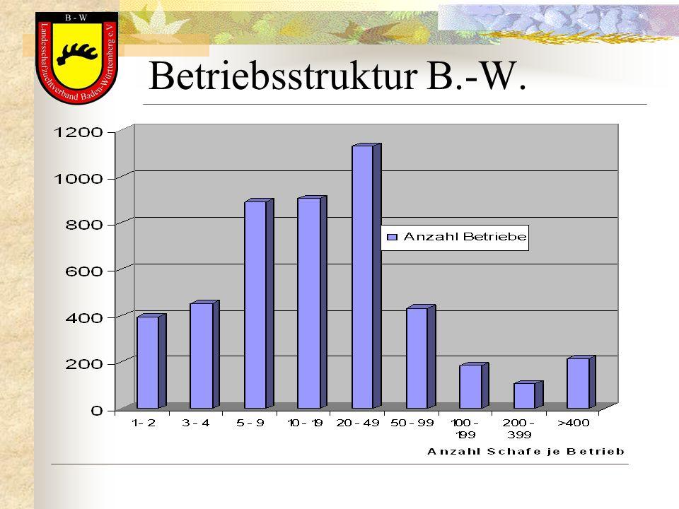Betriebsstruktur B.-W.
