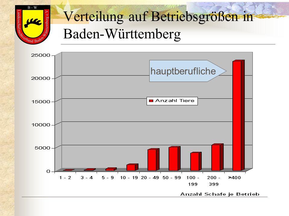 Verteilung auf Betriebsgrößen in Baden-Württemberg hauptberufliche