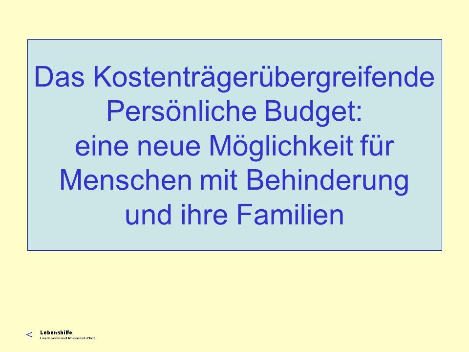Das Kostenträgerübergreifende Persönliche Budget: eine neue Möglichkeit für Menschen mit Behinderung und ihre Familien