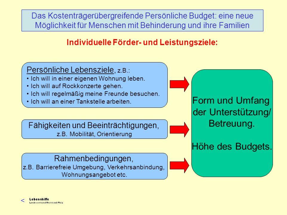 Individuelle Förder- und Leistungsziele: Das Kostenträgerübergreifende Persönliche Budget: eine neue Möglichkeit für Menschen mit Behinderung und ihre