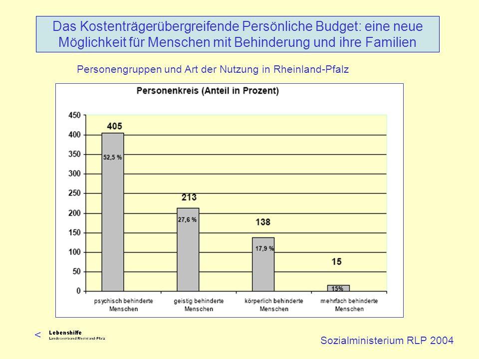 Personengruppen und Art der Nutzung in Rheinland-Pfalz Sozialministerium RLP 2004 Das Kostenträgerübergreifende Persönliche Budget: eine neue Möglichk