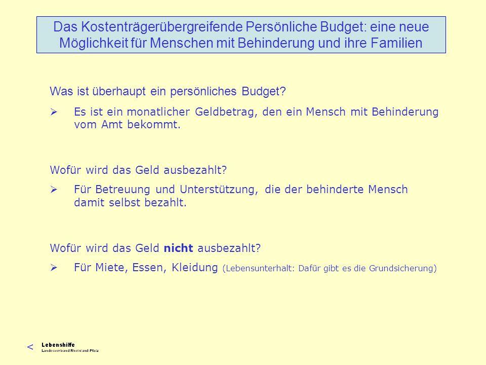Was ist überhaupt ein persönliches Budget? Es ist ein monatlicher Geldbetrag, den ein Mensch mit Behinderung vom Amt bekommt. Wofür wird das Geld ausb