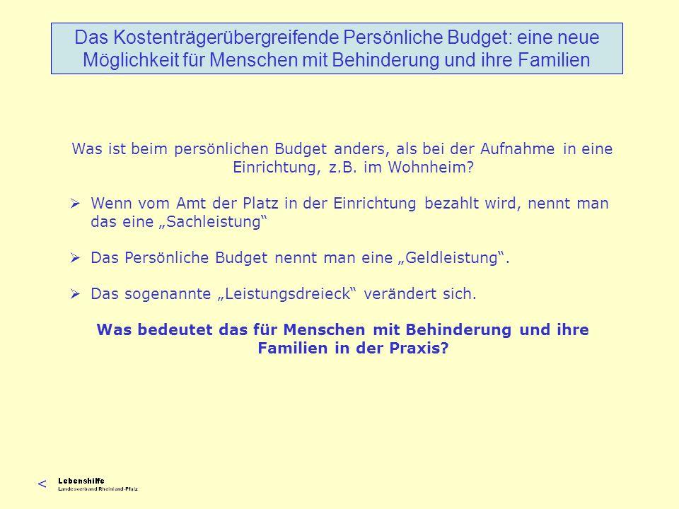 Personengruppen und Art der Nutzung in Rheinland-Pfalz Sozialministerium RLP 2004 Das Kostenträgerübergreifende Persönliche Budget: eine neue Möglichkeit für Menschen mit Behinderung und ihre Familien