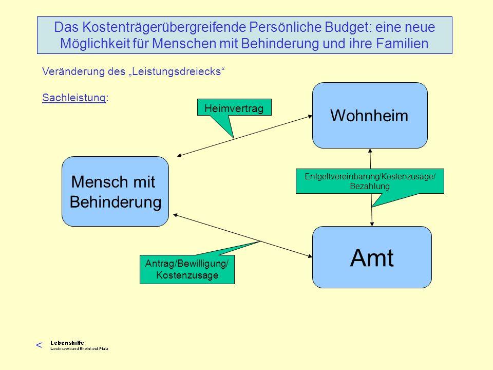 Veränderung des Leistungsdreiecks Sachleistung: Das Kostenträgerübergreifende Persönliche Budget: eine neue Möglichkeit für Menschen mit Behinderung u