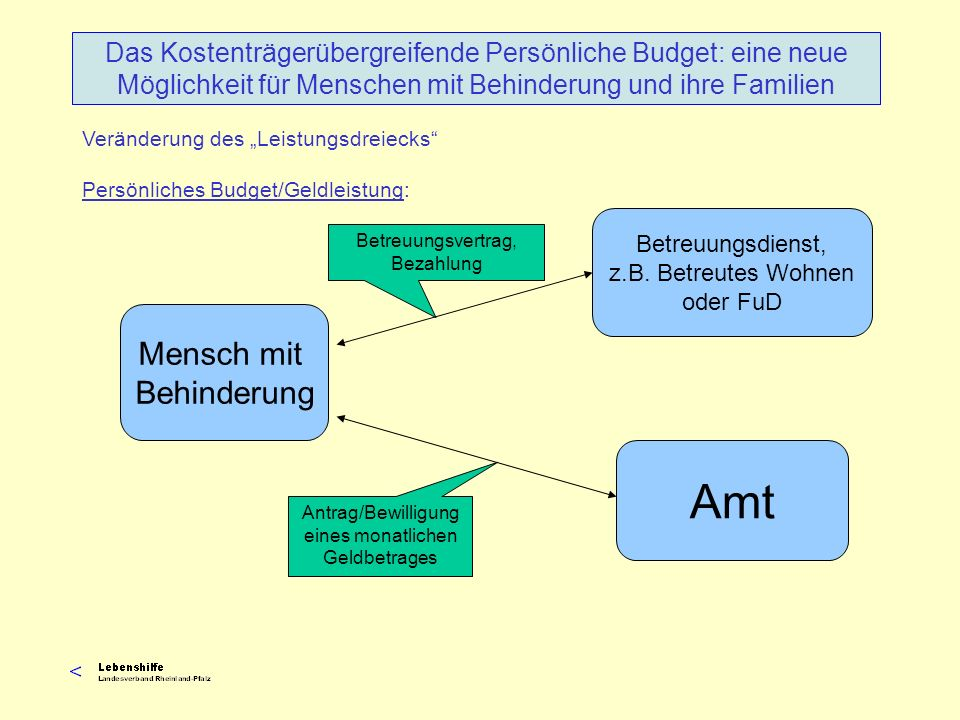 Veränderung des Leistungsdreiecks Persönliches Budget/Geldleistung: Das Kostenträgerübergreifende Persönliche Budget: eine neue Möglichkeit für Mensch