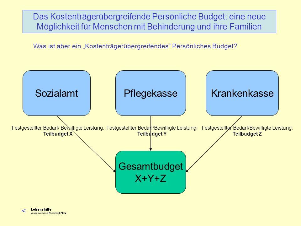 Seit Januar 2008 müssen Leistungen zur Teilhabe als Persönliches Budget bewilligt werden, wenn der behinderte Mensch es so beantragt.