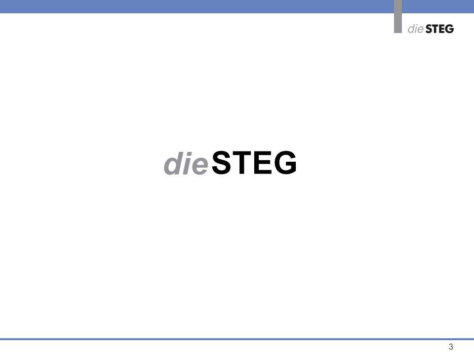 3 die STEG