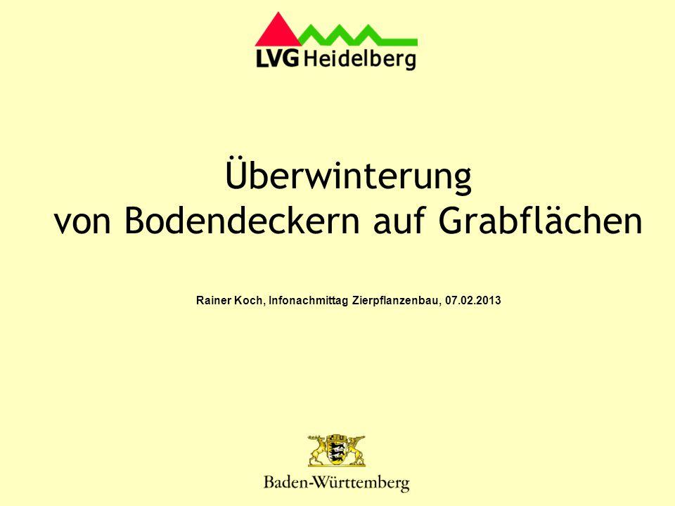 April 2008 Versuchsanlage- vollsonniger Standort Sichtungsumfang 2012: 14 Gehölze 28 Stauden ~ 200 m Aktuelle Problematik bei Buxus