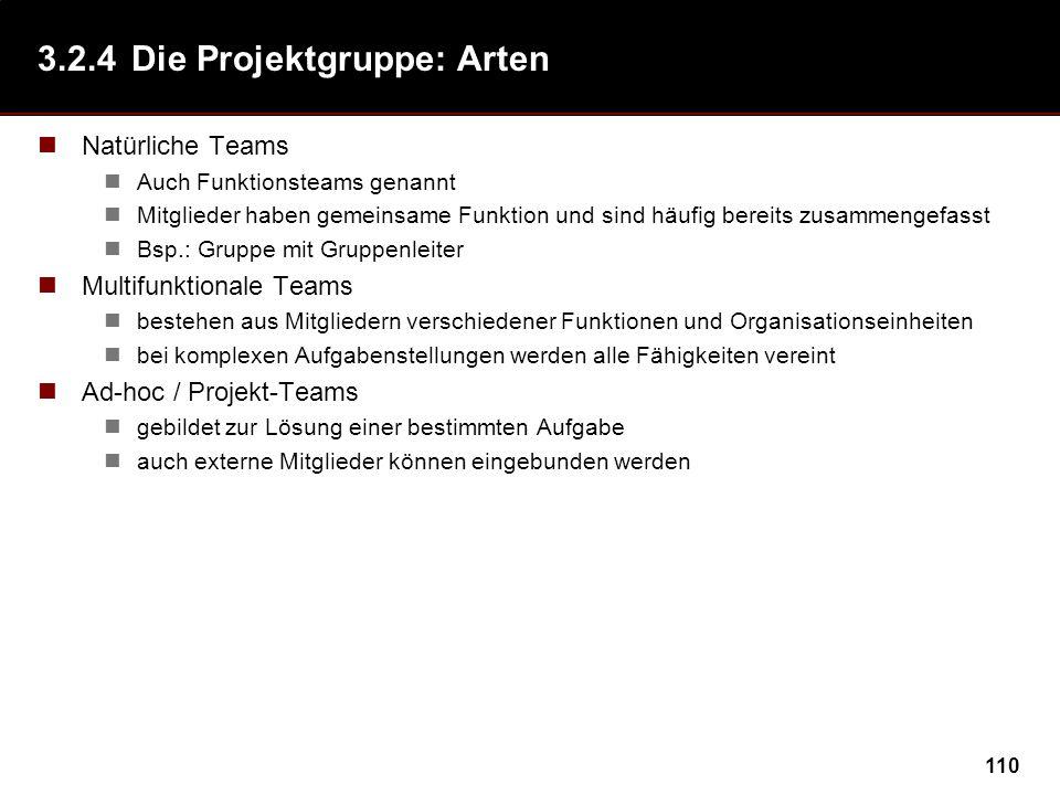 110 3.2.4Die Projektgruppe: Arten Natürliche Teams Auch Funktionsteams genannt Mitglieder haben gemeinsame Funktion und sind häufig bereits zusammenge