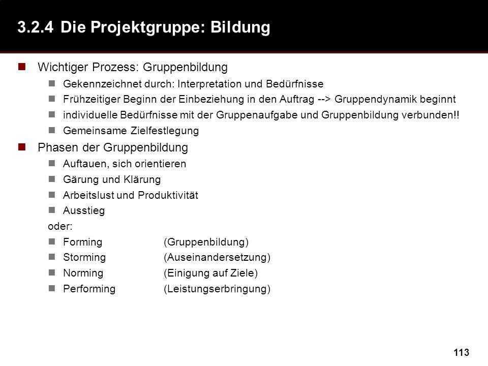 113 3.2.4Die Projektgruppe: Bildung Wichtiger Prozess: Gruppenbildung Gekennzeichnet durch: Interpretation und Bedürfnisse Frühzeitiger Beginn der Ein