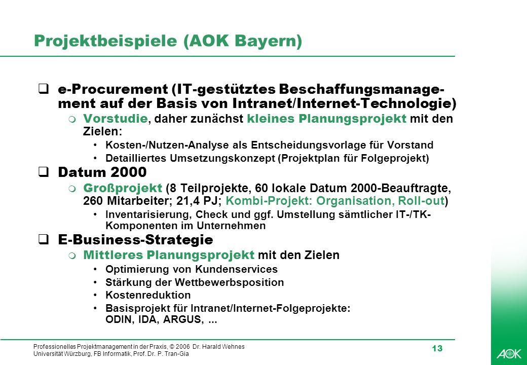Professionelles Projektmanagement in der Praxis, © 2006 Dr. Harald Wehnes Universität Würzburg, FB Informatik, Prof. Dr. P. Tran-Gia 13 Projektbeispie